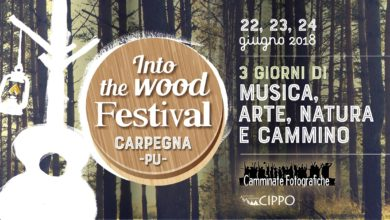 INTO THE WOOD FESTIVAL